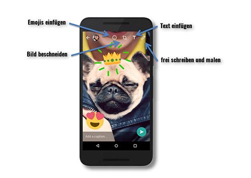 WhatsApp-Funktion